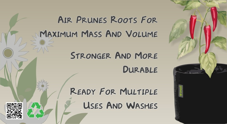 Air Prunes Roots For Maximum Mass And Volume